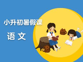 小升初语文暑假课(通用版)